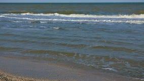 Glückliches kleines Mädchen auf dem Strand stock video footage