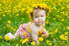 Glückliches kleines Mädchen auf der Wiese stockbild