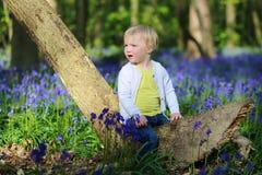 Glückliches kleines Mädchen, das im Glockenblumewald spielt Lizenzfreies Stockfoto