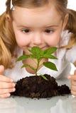 Glückliches kleines Mädchen, junge Anlage beobachtend lizenzfreie stockbilder