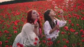 Glückliches kleines Mädchen und ihre Mutterschlagseifenblasen auf dem blühenden Gebiet von roten Mohnblumen, Zeitlupe stock video footage