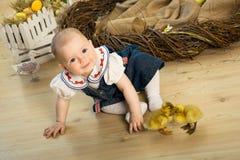 Glückliches kleines Mädchen wird mit netten flaumigen Ostern-Entlein gespielt lizenzfreies stockbild