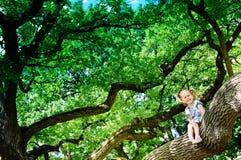 Glückliches Kleinkindmädchen, das auf sehr großem Baum des Zweigs sitzt Lizenzfreie Stockfotografie