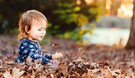 Glückliches Kleinkindmädchen, das draußen in einem Stapel von Blättern spielt Stockfotografie