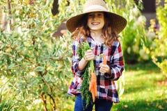 Glückliches Landwirtkindermädchen, das neue Hauptwachstumskarottenernte von eigenem Garten auswählt lizenzfreie stockfotografie