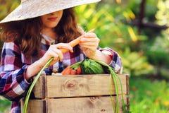 Glückliches lustiges Kindermädchen im Landwirthut und -hemd, die Herbstgemüseernte spielen und auswählen Lizenzfreie Stockfotos