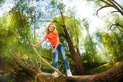 Glückliches Mädchen, das über gefallenem Baum im Wald klettert Stockfotos