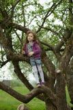 Glückliches Mädchen, das auf enormem Baum der Niederlassung steht Stockfotografie