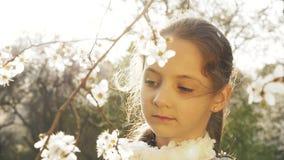 Glückliches Mädchen, fallender Blumenblatt-Baum stock video footage