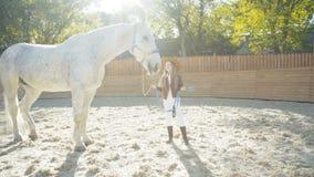 Glückliches Mädchen in Huthaltungs- und -liebkosungspferd-` s gehen auf Arena voran stock video