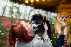 glückliches Mädchen mit Reisenfall Junge Paare auf dem Weihnachtsbasar mit Haustieren Lizenzfreie Stockfotografie