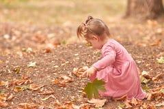 Glückliches nettes kleines Mädchen, das auf einem Parkhintergrund spielt Herbstspaßkonzept Kopieren Sie Platz stockbilder