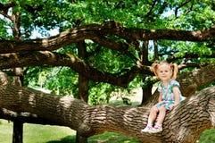 Glückliches nettes Mädchen, das auf sehr großem Baum des Zweigs sitzt Stockfotografie
