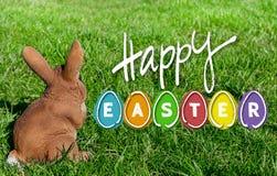 Glückliches Ost mit bunten Eiern und Osterhasen auf Wiese Lizenzfreie Stockfotografie