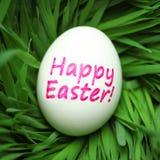 Glückliches Osterei versteckt im Gras Lizenzfreies Stockbild