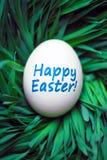 Glückliches Osterei versteckt im Gras Stockfoto