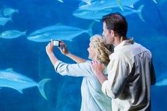 Glückliches Paar, das ein Foto von Fischen macht Stockbild