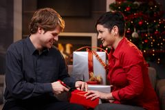 Glückliches Paar, das für Weihnachten sich vorbereitet Stockbild