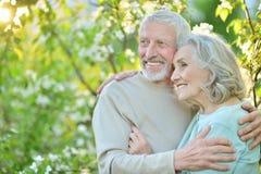 Glückliches Paar, das im Park aufwirft Stockbilder