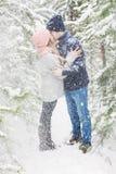 Glückliches Paar, das im Winterwald unter großen Schneefällen küsst Stockbild