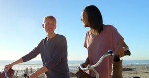 Glückliches Paar, das miteinander beim Gehen auf die Küste mit Fahrrad 4k spricht stock footage