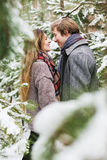 Glückliches Paar, das unter Tannenbäumen im Schnee lächelt Lizenzfreies Stockfoto