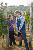 Glückliches Paar im Weinberg Stockfotos