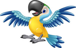 Glückliches Papageienfliegen Lizenzfreies Stockfoto