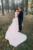 Glückliches romantisches eben verheiratetes Paar, das eine Kerze im Herbstkiefernwald halten sich umfasst Stockfotografie