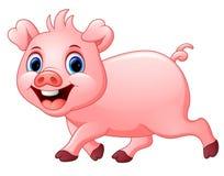 Glückliches Schwein der Karikatur lokalisiert auf weißem Hintergrund Stockbild