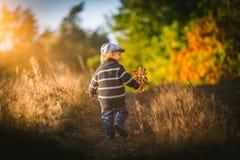 Glückliches Spielen des kleinen Jungen im Freien in der schönen Herbstlandschaft Stockfotografie