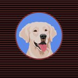 Glückliches weißes Labrador retriever Porträt eines Hundes lizenzfreie abbildung
