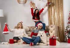 Glückliches Weihnachtsfeiern von jungen Leuten mit Hunden und Geschenken stockfoto