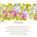 Glückwunschrahmen von Blumen Für Designbeschaffenheiten Postkarten, Grußkarten für Geburtstag, Hochzeit, Valentinsgruß ` s Tag, F Lizenzfreies Stockbild