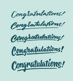 Glückwunschweinlesehandbeschriftungstypographiephrasenbetriebsmittel stockbild