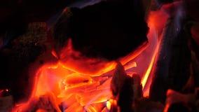 Glühende helle rote brennende Kohlen brennen hell und Glühen Feuerhitzebrennholz brennt rotes blaues Feuer nahaufnahme stock footage
