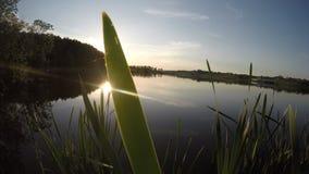 Glühende Sonne und schöner Sonnenuntergang des Sees stock footage