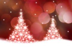 Glühende Weihnachtsbäume Stockfotos