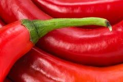 Glühender Chili Pepper Lizenzfreies Stockbild