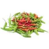 Glühender Chili Pepper On White Background Stockfotos