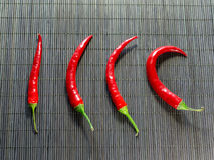 Glühender Chili Peppers Lizenzfreie Stockfotos