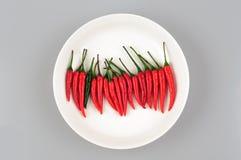 Glühender Chili Peppers Stockbild