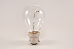 Glühlampe. Stockfotografie