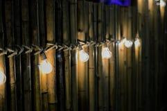 Glühlampe auf Bambus Lizenzfreie Stockbilder