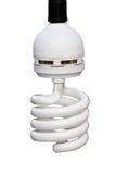 Glühlampe der Energieeinsparung Lizenzfreie Stockfotos