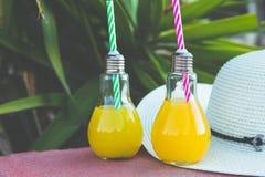 Glühlampe-Glasflaschen mit frisch gepressten orange tropischen Früchten Juice Straw Hat Green Palm Tree verlässt Laub-Hintergrund Stockbild