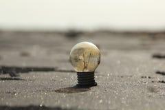 Glühlampe im Sand Stockfoto