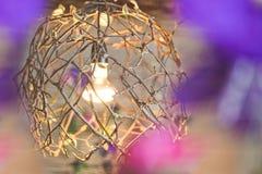 Glühlampe innerhalb eines Baumasts Stockfoto