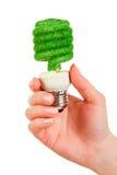 Glühlampe Konzept Eco Lizenzfreie Stockfotos