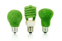 Glühlampe Konzept Eco Stockfoto